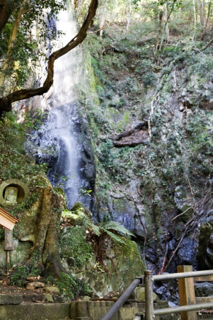 東林寺の白滝画像